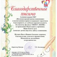 Волонтеры в Железногорском приюте_10