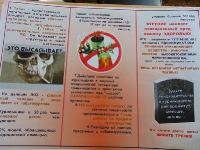 Россия без никотина_6